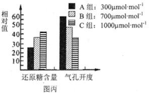 11分 图甲表示水稻和菠菜的光合作用受温度影响的示意图 净光合速率单位为μmolO2 mgh 1 ,图乙表示菠 无忧题库