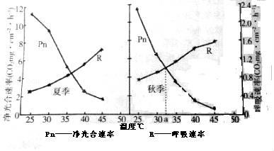 科研人员研究了在夏季与秋季时,温度对某植物光合速率和呼吸速率的影响,实验结果如下图 净光合速率在光照 无忧题库