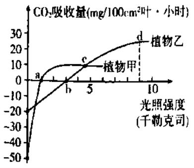 在CO2浓度为0.03 和恒温条件下,测定植物甲和植物乙在不同光照条件下的光合速率,结果如图 据图分析下列叙 无忧题库
