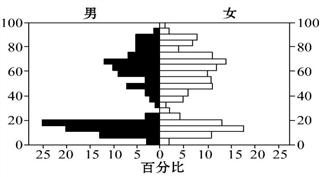 人口年龄结构金字塔图_人口年龄结构金字塔图的判读